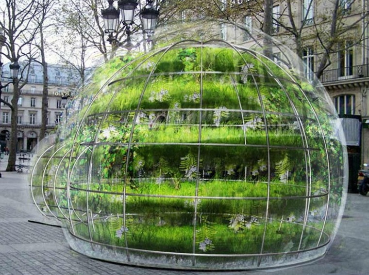 植物泡泡第2张图片