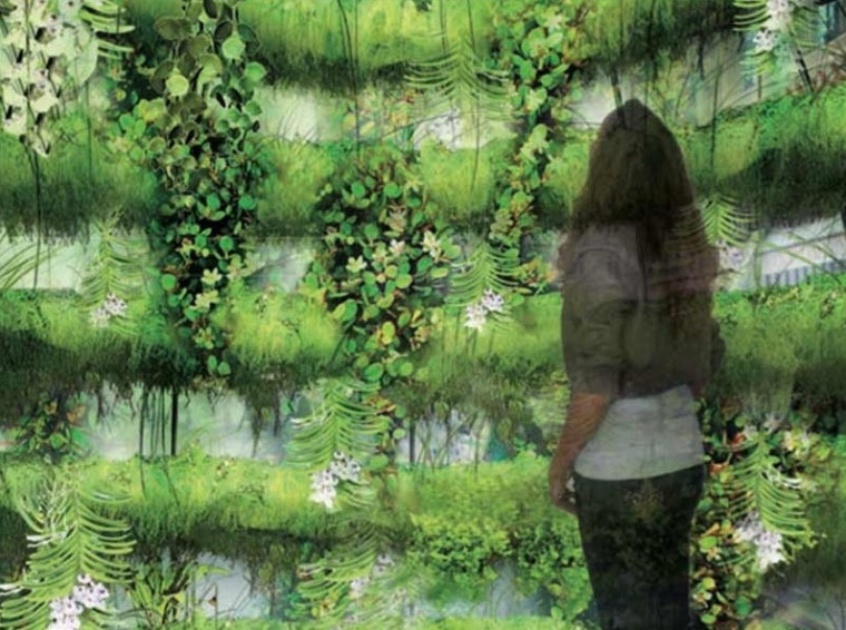 植物泡泡第3张图片