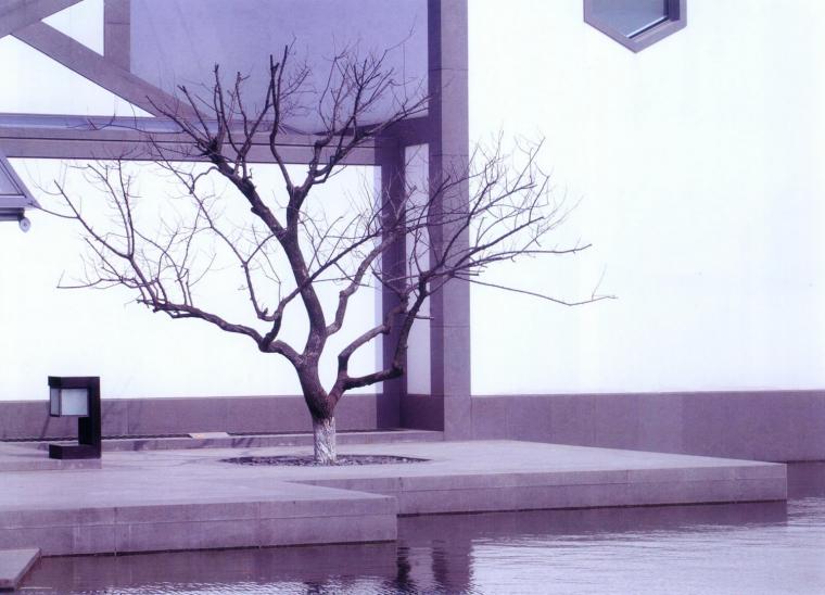 苏州博物馆--水墨印象第6张图片