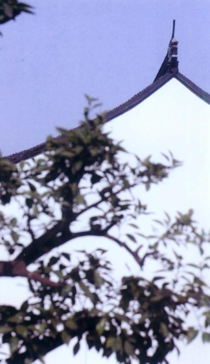 苏州博物馆--水墨印象第9张图片
