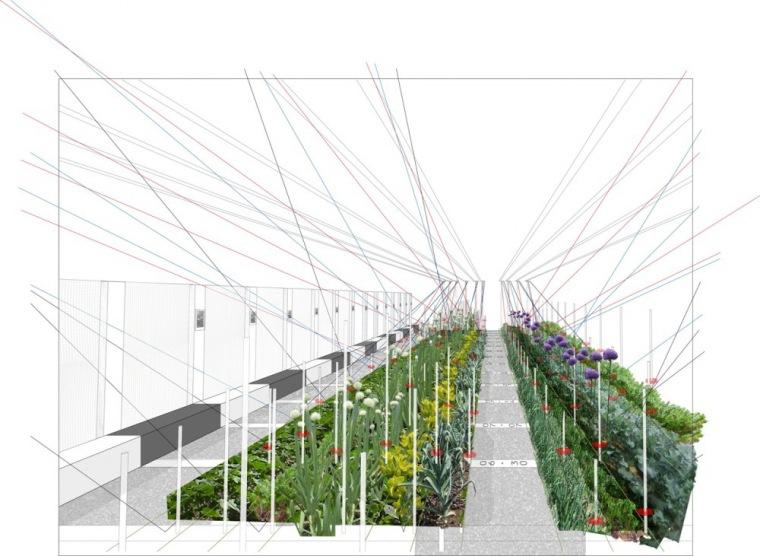 渲染 rendering-交错耕犁花园第10张图片