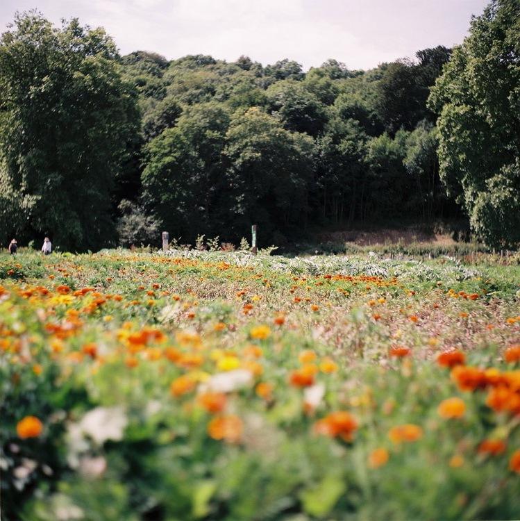 EANA公园第4张图片