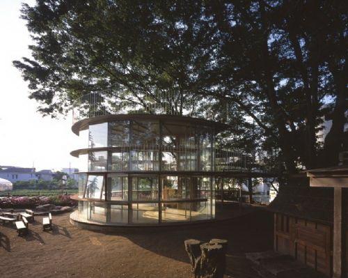 玻璃结构中有两间教室-树屋幼儿园第3张图片