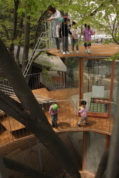 从顶层向下望-树屋幼儿园第4张图片