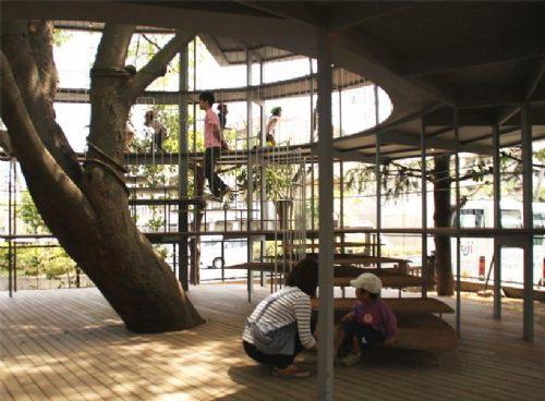建筑包围的这棵大榉树曾在台风中-树屋幼儿园第6张图片