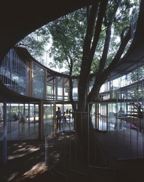 教室内效果-树屋幼儿园第8张图片