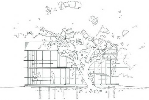 剖面图-树屋幼儿园第21张图片