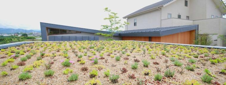 贵志川住宅第16张图片