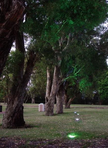 哈代公园第7张图片