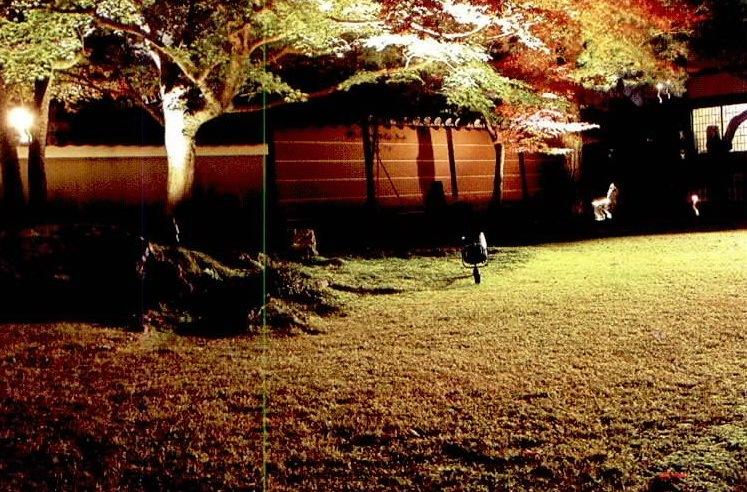 高台寺夜景照明第3张图片