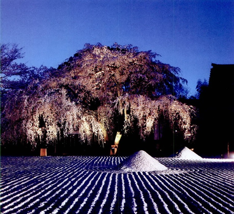 高台寺夜景照明第8张图片