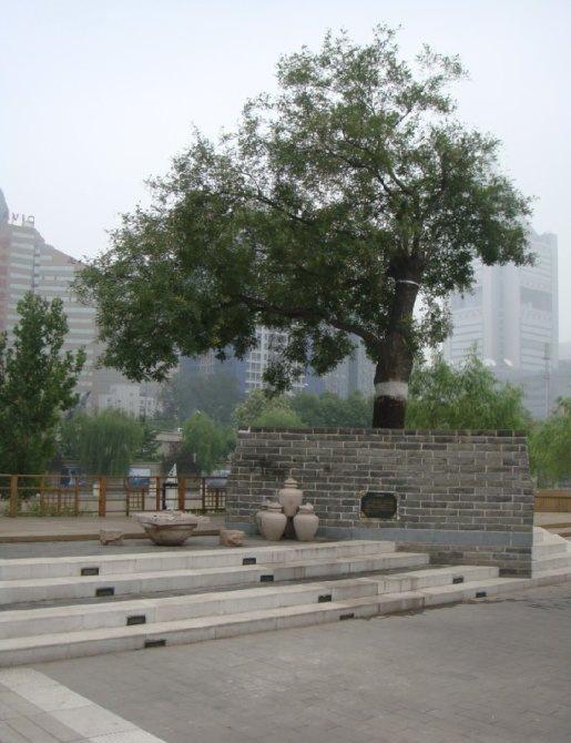 庆丰公园第6张图片