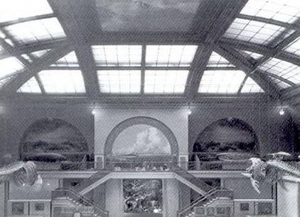 美国自然历史博物馆海洋生物大厅第10张图片
