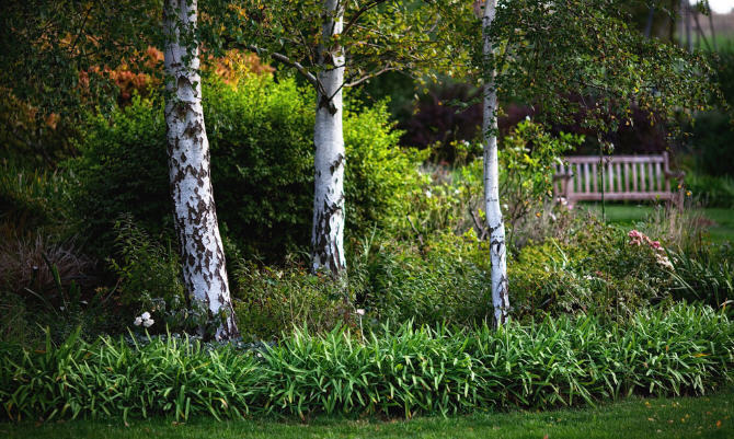 Up Country花园第4张图片