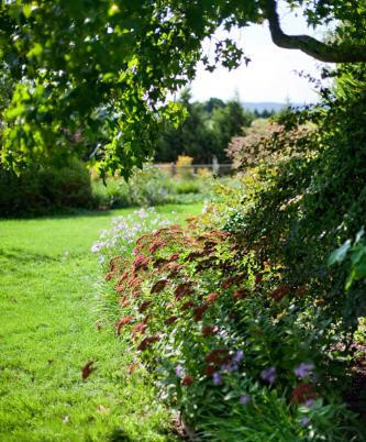 Up Country花园第15张图片