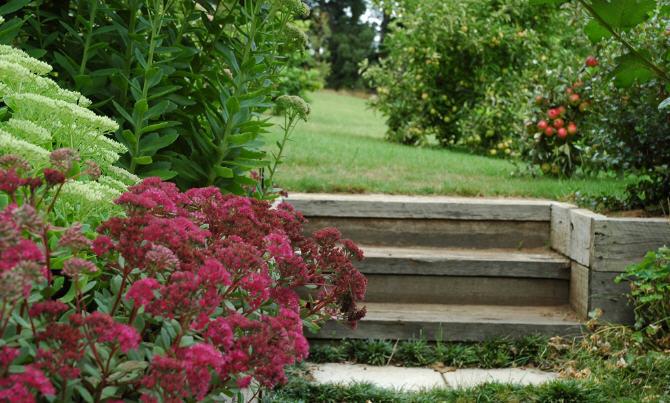 花之盛开花园第7张图片