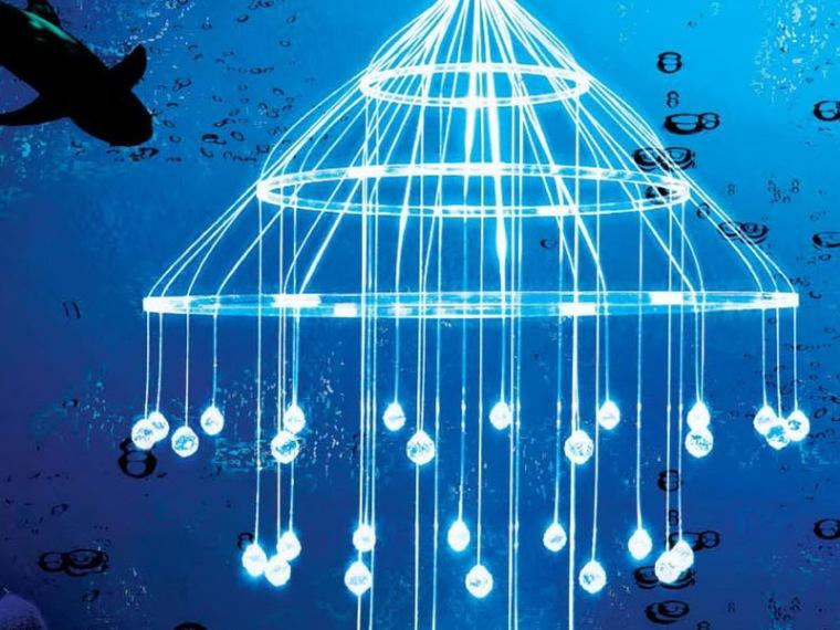 海洋之星照明灯第1张图片