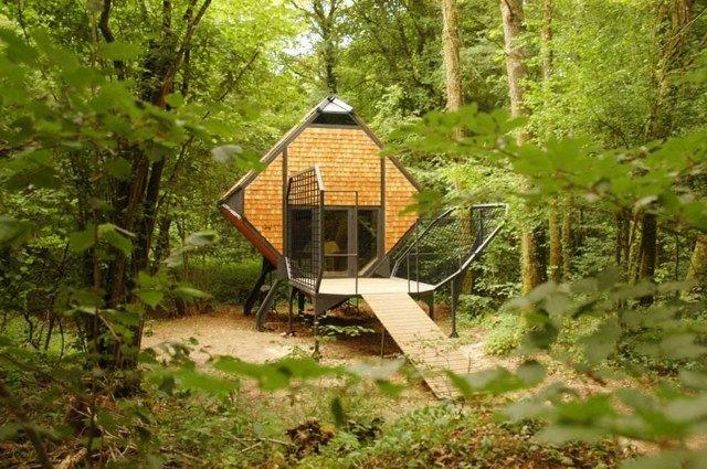 1-森林旅店第2张图片