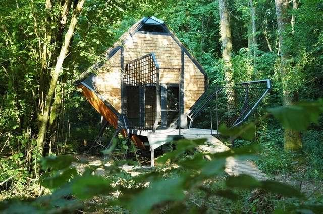 森林旅店第12张图片
