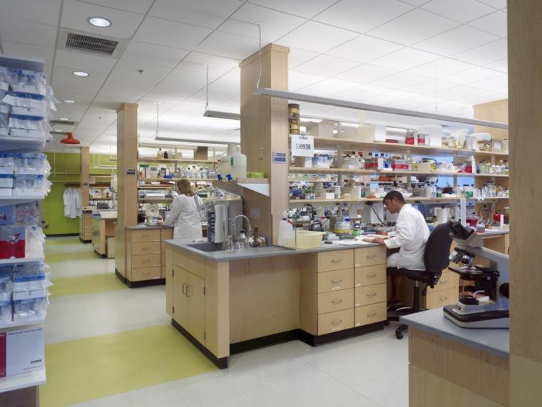 波士顿生命科学中心