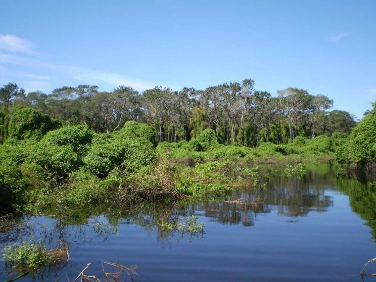 世界最大湿地公园的极致美景