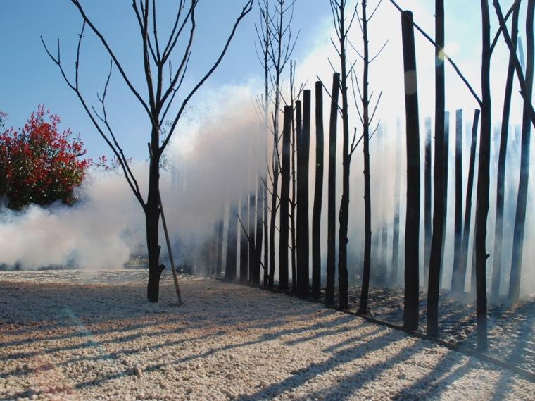 树木与火主题花园