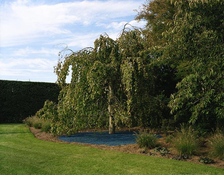 城外花园第9张图片