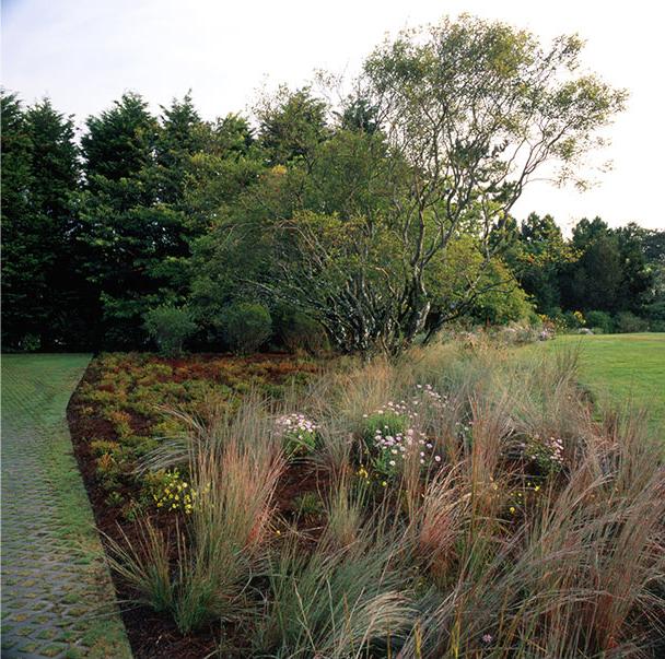 城外花园第12张图片