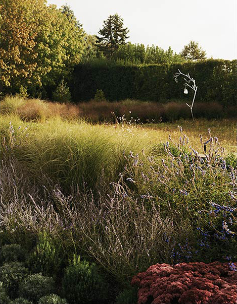 城外花园第17张图片