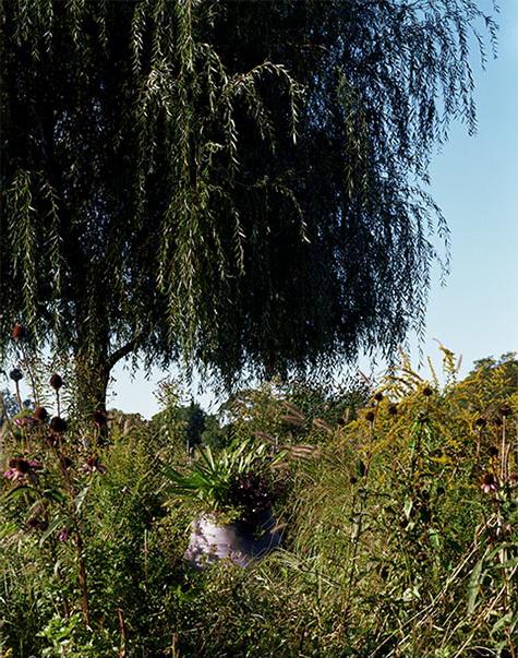 城外花园第19张图片