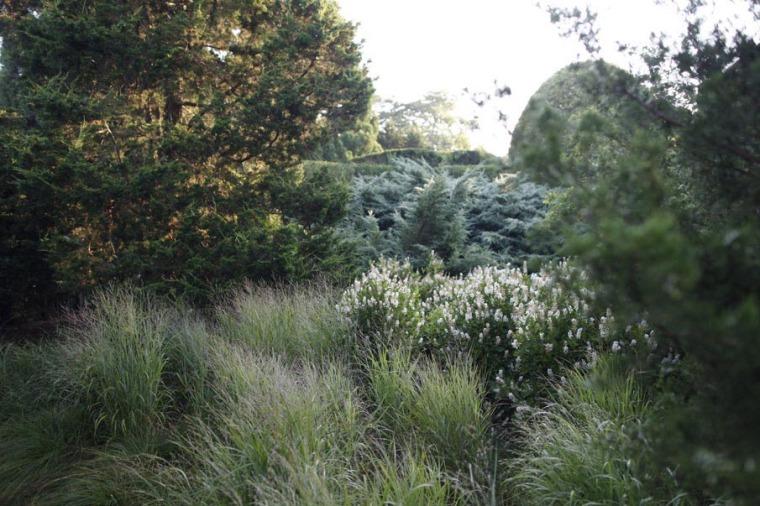 城外花园第37张图片