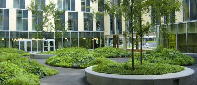 魁北克大学蒙特利尔分校校园第2张图片
