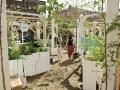 都市药用植物种植园