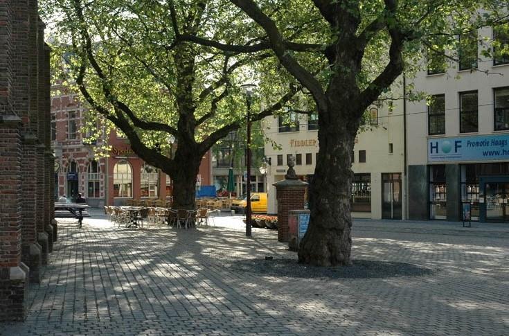 海牙教堂广场第5张图片
