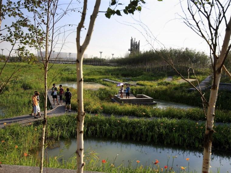 2012年ASLA奖综合设计奖——优秀奖 群力湿地公园