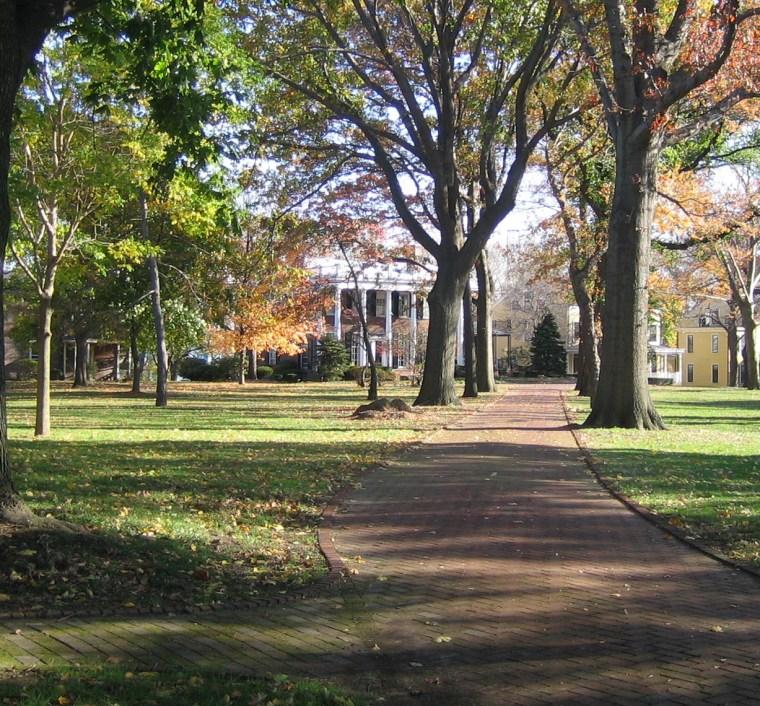 2012年ASLA奖分析与规划奖 总督岛公园及公共空间设计第8张图片
