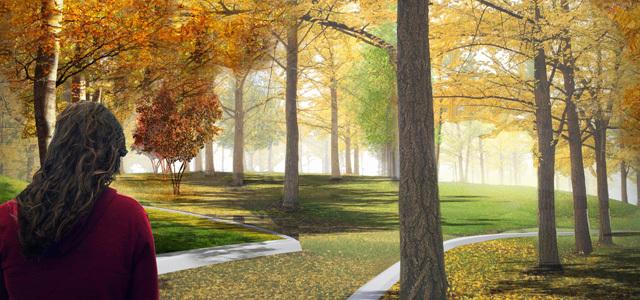 2012年ASLA奖分析与规划奖 总督岛公园及公共空间设计第31张图片