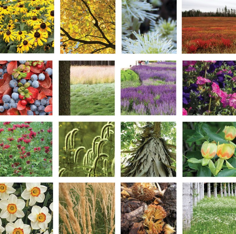 2012年ASLA奖分析与规划奖 总督岛公园及公共空间设计第38张图片
