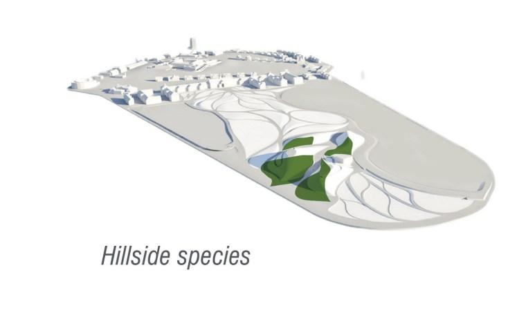 2012年ASLA奖分析与规划奖 总督岛公园及公共空间设计第49张图片