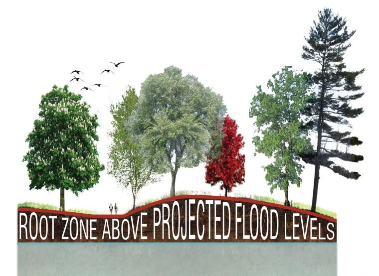 2012年ASLA奖分析与规划奖 总督岛公园及公共空间设计第52张图片