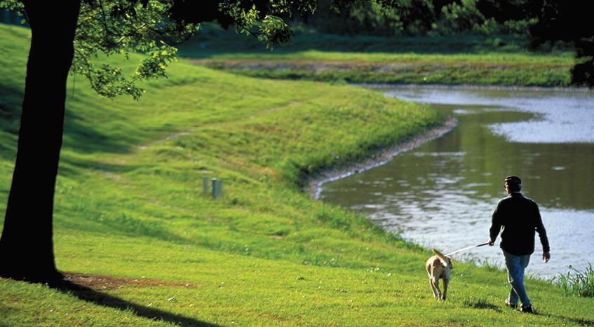 2012年ASLA奖分析与规划奖都市里的农业小镇_5