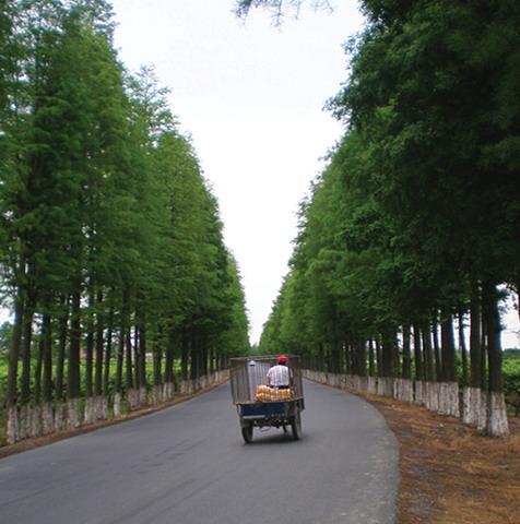 2012年ASLA奖分析与规划奖都市里的农业小镇_7