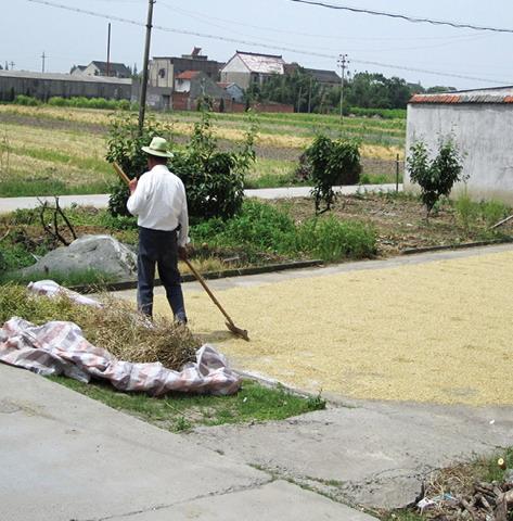 2012年ASLA奖分析与规划奖都市里的农业小镇_15