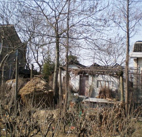 2012年ASLA奖分析与规划奖都市里的农业小镇_17