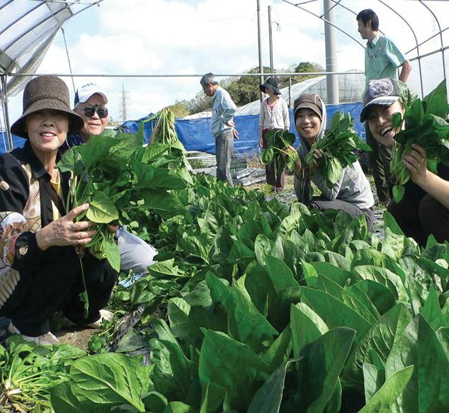 2012年ASLA奖分析与规划奖都市里的农业小镇_22