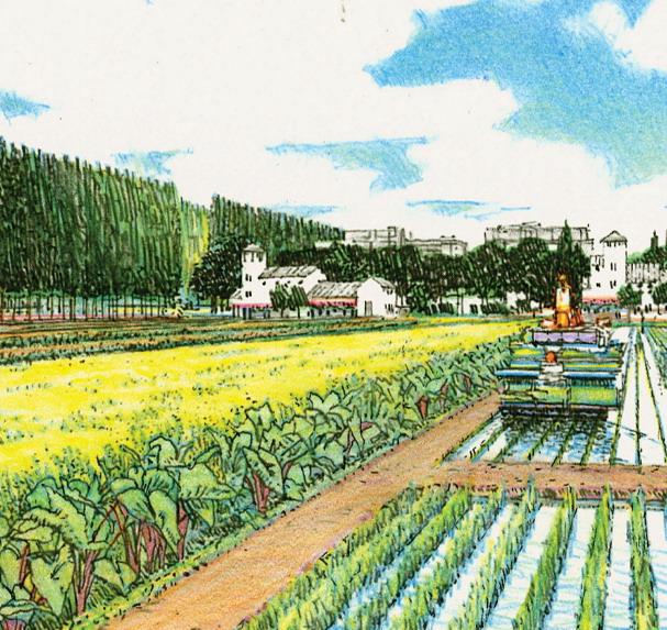 2012年ASLA奖分析与规划奖都市里的农业小镇_30