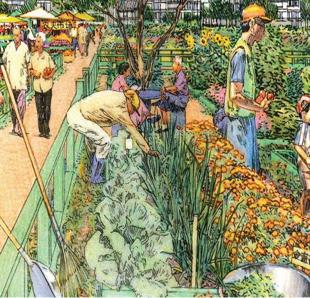 2012年ASLA奖分析与规划奖都市里的农业小镇_31
