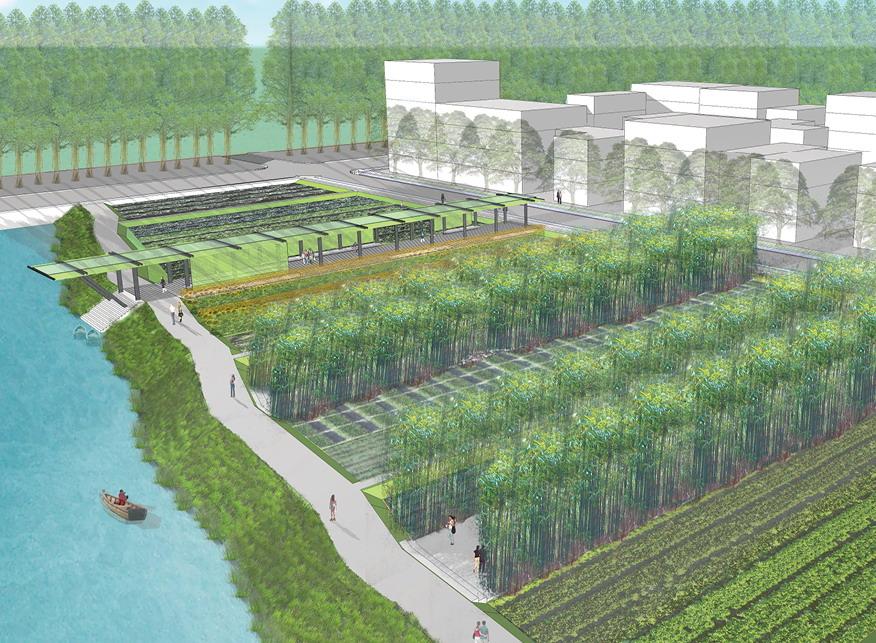 2012年ASLA奖分析与规划奖都市里的农业小镇_47