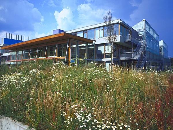 IBN室内景观资料下载-IBN组织新办公楼内外部景观