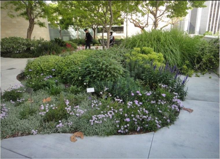 迪士尼音乐厅公共景观设计第8张图片